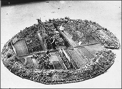 a dig for victory garden made in a bomb crater