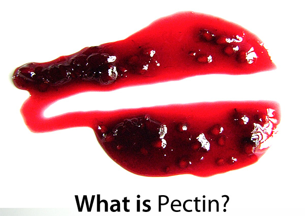 Top 28 what is pectin what is a good substitute for for Pectine cuisine
