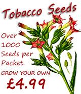 seeds ad