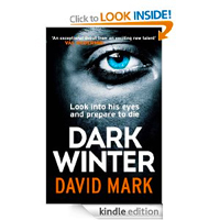 Dark Winter by David Markonly 0.20p