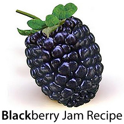 black berry jam recipe logo